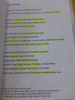Markieren_im_Text_-_Kaninchen